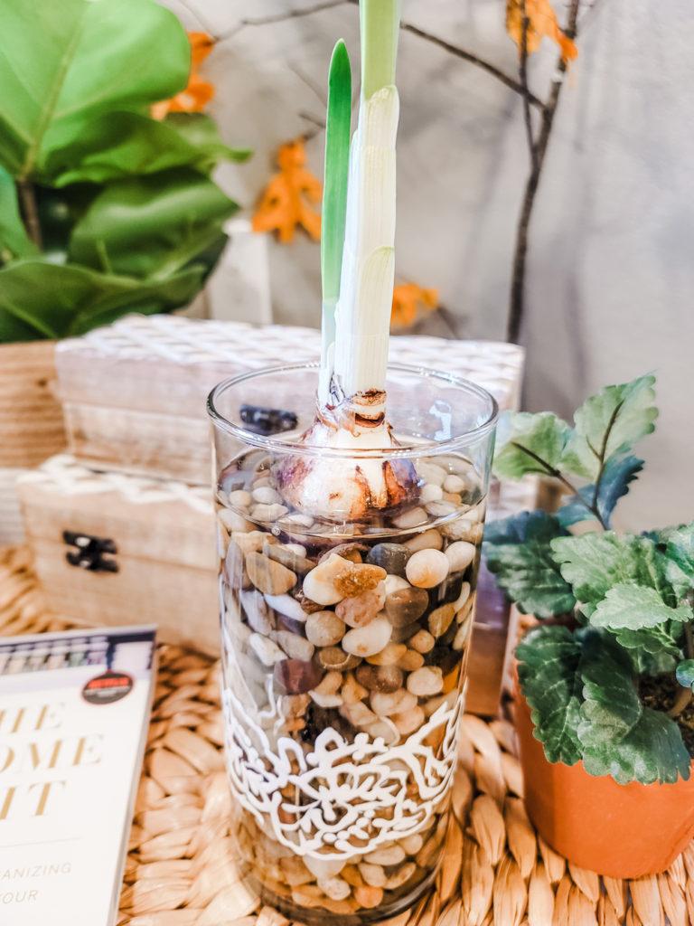 DIY Dollar Store Decorative Vase