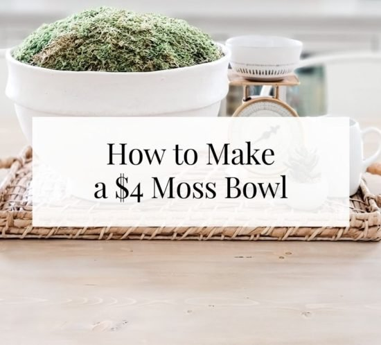 How to Make a Moss Bowl for $4