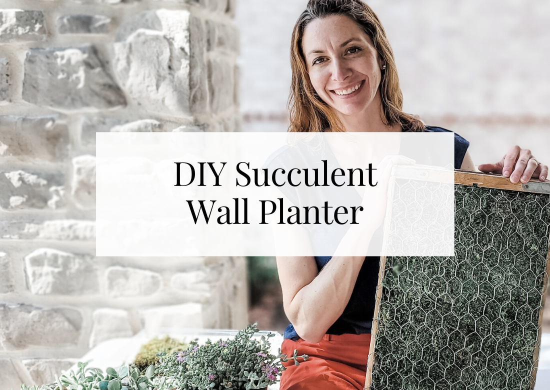 DIY vintage succulent wall planter